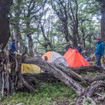 Das Waldcamp