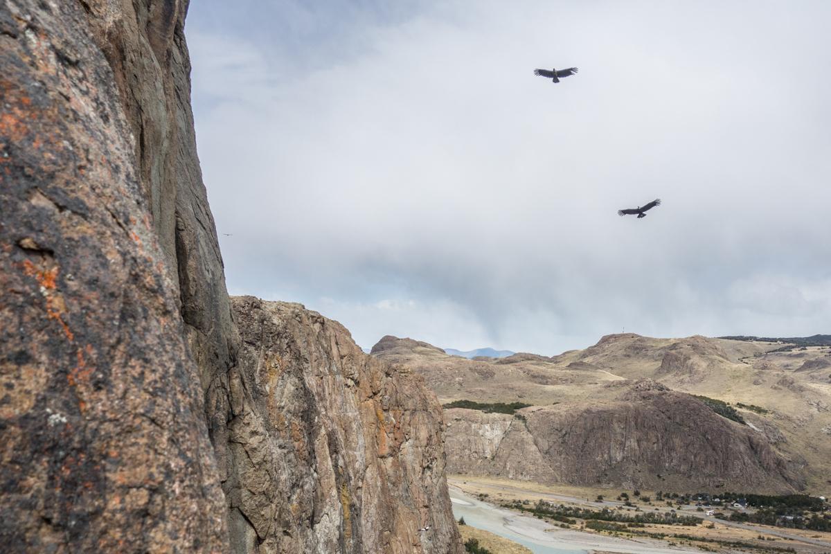 Condore beobachten uns beim klettern