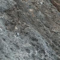 Klettern Sizilien San Vito Lo Capo klebehaken