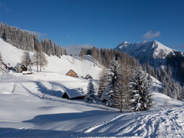 Schnupper Skitour Gammering Almen